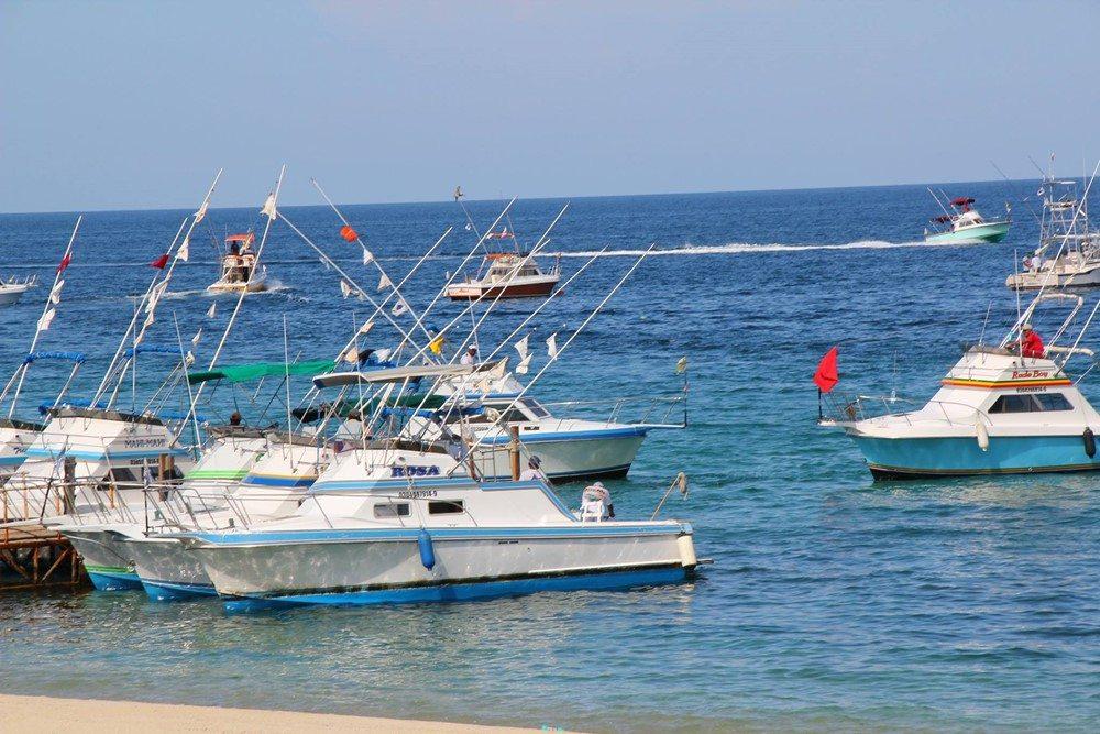 cabo san lucas fishing resorts